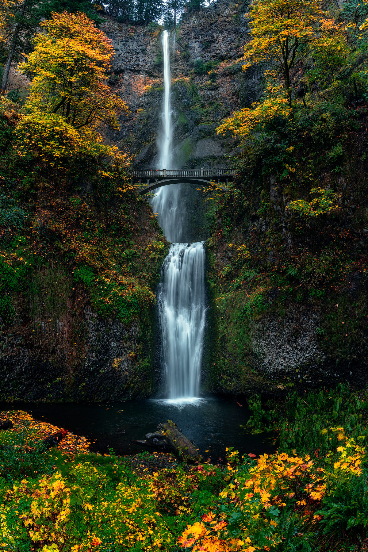 Multnomah Falls, Columbia River gorge, waterfall, photo